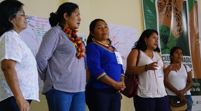 Pachamama Alliance Sacred Headwaters